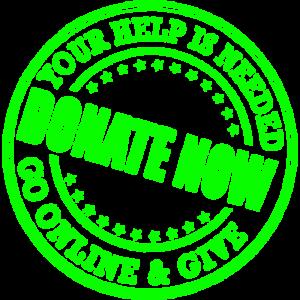 donate now icon